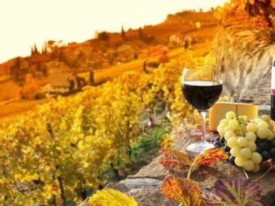 chianti wine tour
